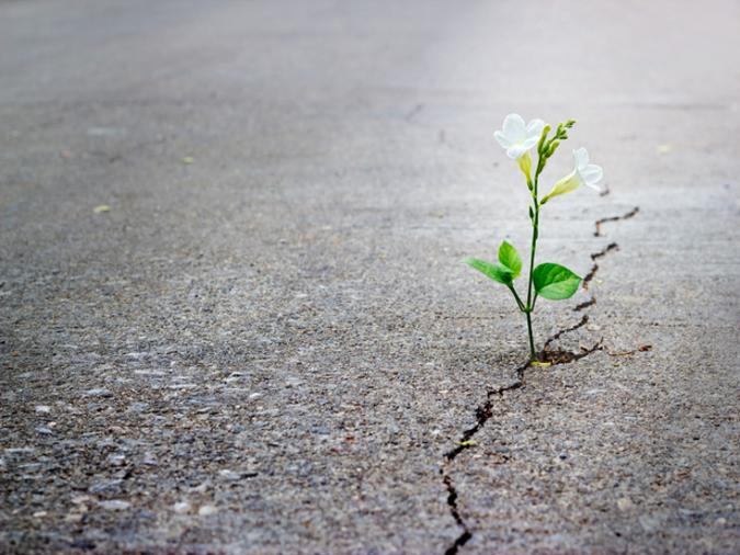 COVID-19: Riflessioni e cambiamenti per superare le difficoltà
