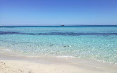 Le vacanze che ti cambiano la vita